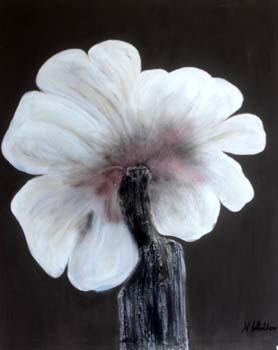 Amaryllis in grau